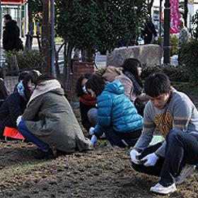 尼崎市の花まちボランティアに参加しました