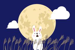 s256_moon_a17_3